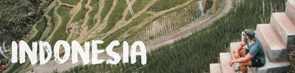 indonesia ivan snz