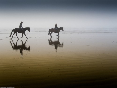 Sycomore CHANEL Beach Horses Mike Baird Flickr