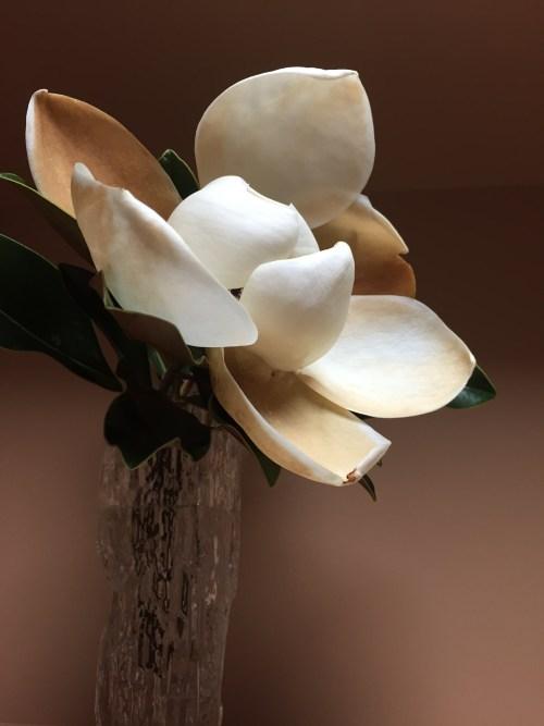 Magnolia P&W Day 2