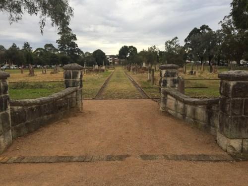 Sampaquita Ormonde Jayne Parramatta Cemetery 2015 #4