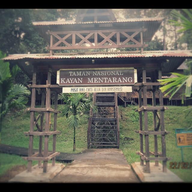 Pusat konservasi Taman Nasional Kayan Mentarang via @sewarashati