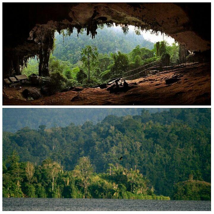Taman Nasional Kayan Mentarang ini diberkati dengan berbagai keanekaragaman hayati via @gunungpancar