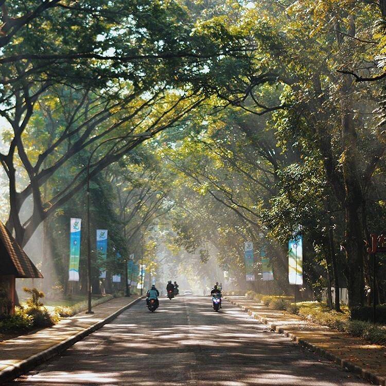 Meski dekat dengan Jakarta, Bogor ini lebih sejuk dan segara via by @arismalrezki