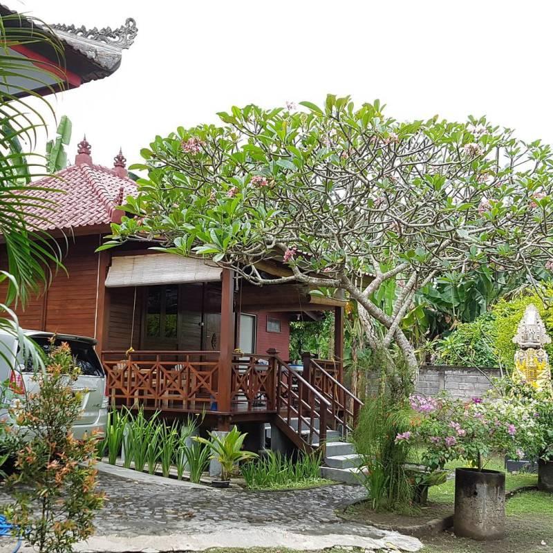 Suasana penginapan di Pondok Wisata Larisa Melaya, Jembrana via @tinapuspita93