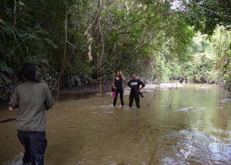 Masuk hutan dan menyusuri sungai di Bukit Baka Bukit Raya National Park bakalan seru banget!