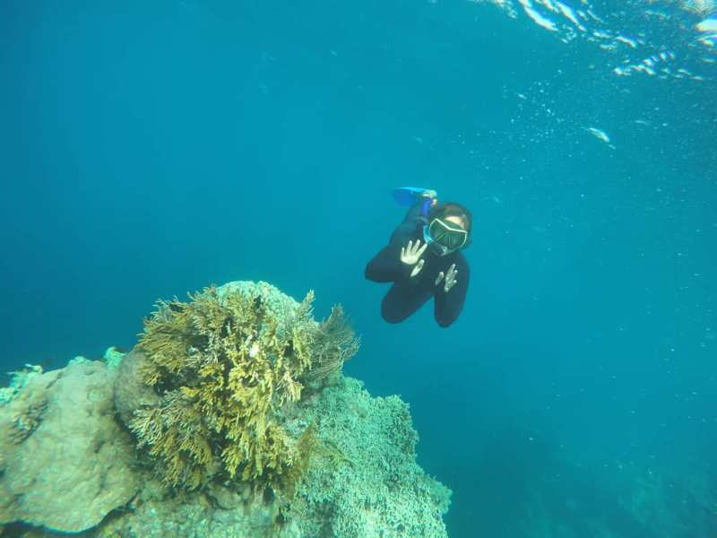 Menjangan bay adalah wilayah yang digemari para penyelam dan pecinta snorkeling dari berbagai daerah dan negara! via @nitaapriliani