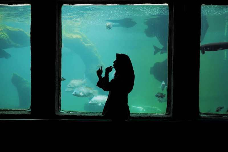 Panduan Wisata Batu Secret Zoo Jatim Park 2 Untuk Yang Ingin Pergi Liburan Kesana