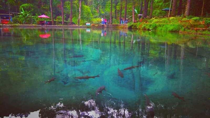 Daftar Tempat Wisata Di Blitar Jawa Timur Lengkap, Rambut Monte Blitar