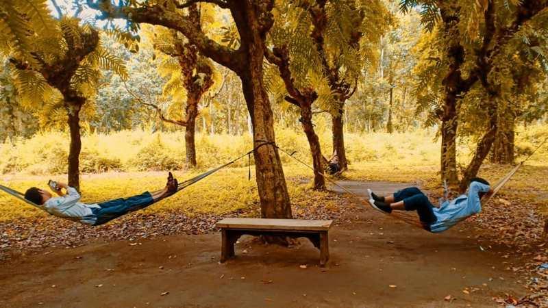 Daftar Tempat Wisata Di Blitar Jawa Timur Lengkap, Kesambi Trees Park Blitar