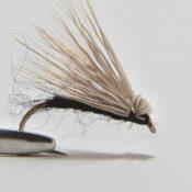 Musta Elk F Fly Pintaperho