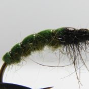 Vihreä Larva Uppoperho