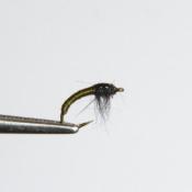 Pieni Oliivi Larva Uppoperho