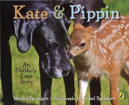 perierga.gr - Kate & Pippin: Μια απίθανη ιστορία αγάπης!