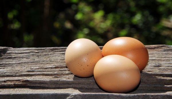 perierga.gr - Πώς θα καταλάβεις αν ένα αυγό είναι φρέσκο χωρίς να το σπάσεις;