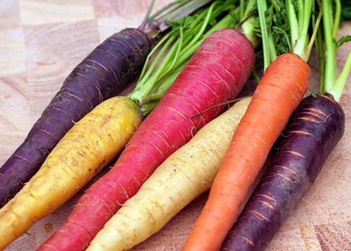 perierga.gr - Τα καρότα δεν ήταν πάντα πορτοκαλί!