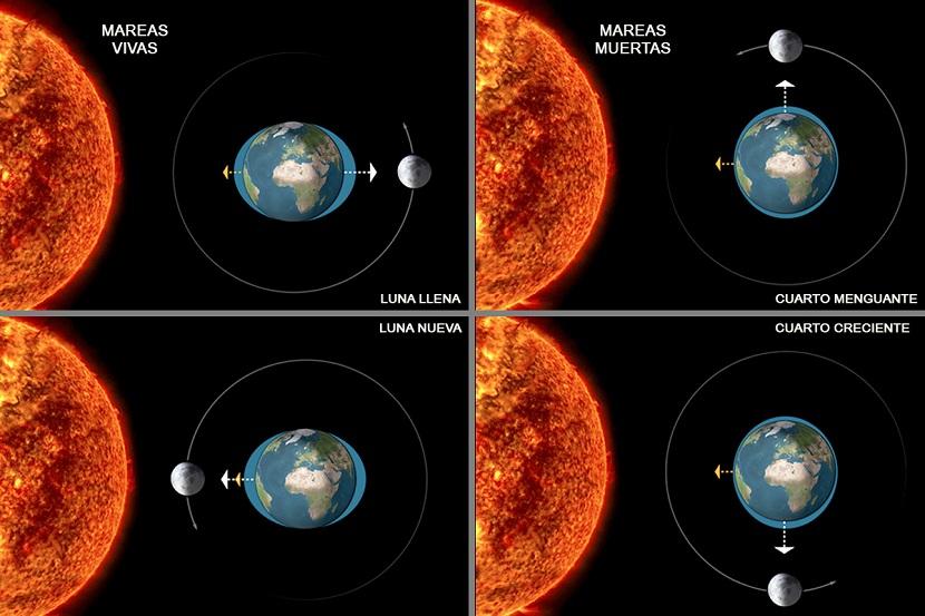 Tierra-plana-redonda-esférica-terraplanismo-terraplanista-gravedad-Fisica-Ciencia-Pseudociencia-fraudes-Luna-Sol-mareas-flujo-reflujo-vivas-muertas