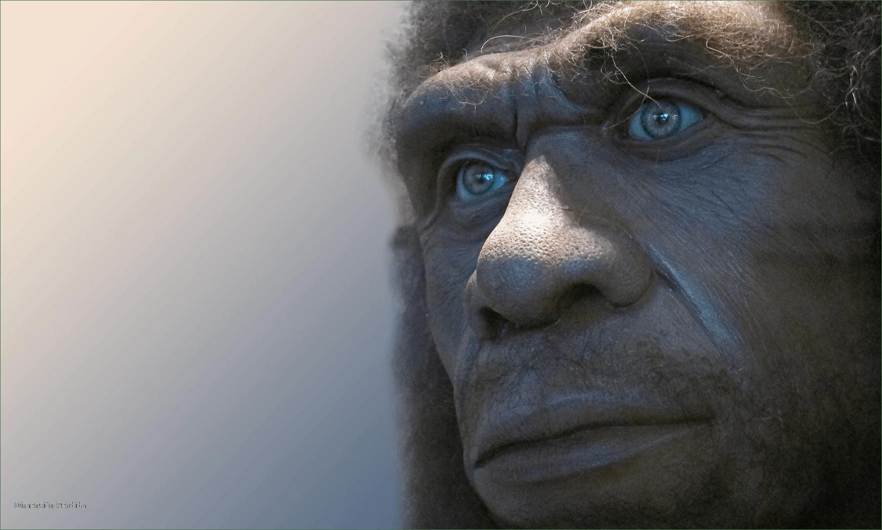 Paleontologia-arqueologia-ciencia-curiosidades-historia-neandertales-homo-neanderthalensis-hominidos-divulgacion-blog-Neander