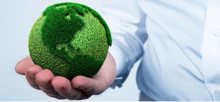 environmental-education-prevention-awareness-sensitivity-environment-invasive-species-legislation