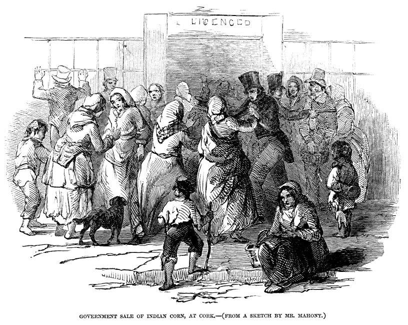 robert-peel-charles-trevelyan-great-irish-famine-ireland-potato-pytophtora-infestans-1845-plague-oomycete