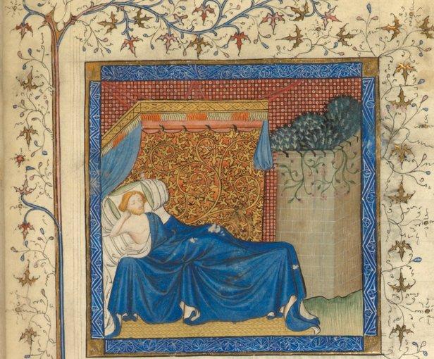 roman de la rose-garden of earthly delights-romance of the rose