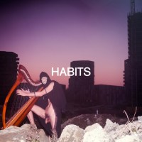 cover image for Habits - Shame/Desire