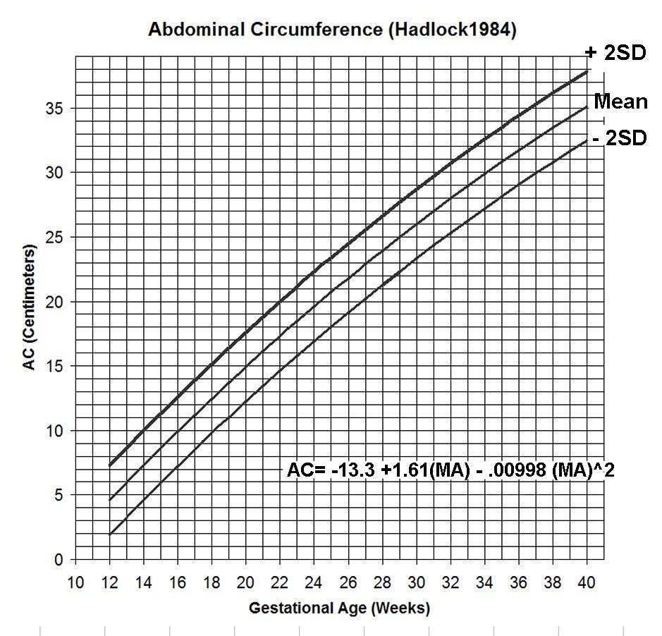 medium resolution of 35 week pregnant woman diagram