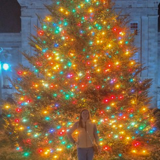 Casey and the Capitol Christmas tree