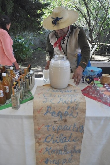 tepe tianguis alternativo3