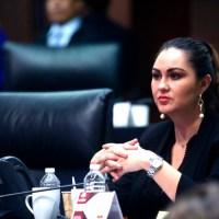 Senadora se pronuncia por replantear urgentemente Seguridad de Guanajuato