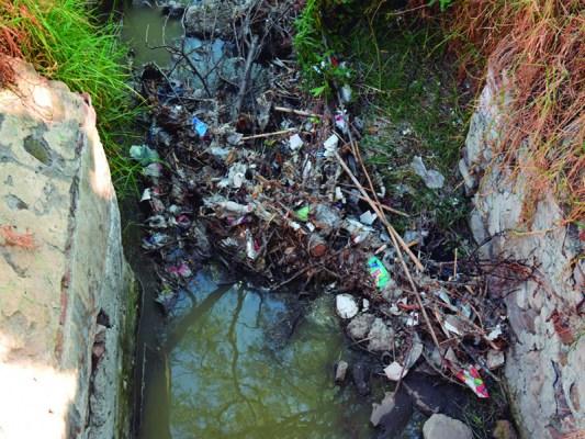 Descargas residuales contaminan la laguna de La Piedad