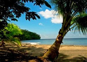 isla-gorgona