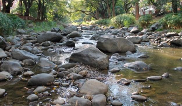 rio-cali-jul-29-600x350