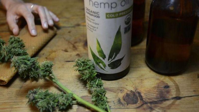 Marihuana-medicinal-Colombia-FotoAFP_MEDIMA20151202_0186_24
