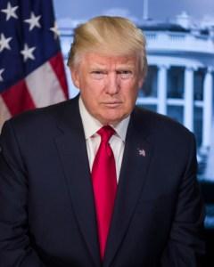 Donald Trump Official Portrait