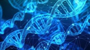 El 60% de los estadounidenses pueden ser identificados con una sola muestra de ADN