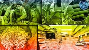 ¿Se aproxima una crisis mundial de alimentos?