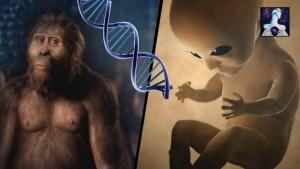 Los Alienígenas nos han creado genéticamente: Evidencia Abrumadora