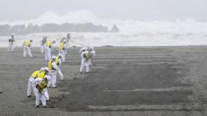 Sismólogos japoneses alertan de que un terremoto de 9 grados y un tsunami podrían devastar el norte del país