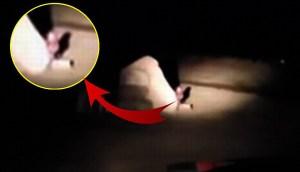 Mujer capta en vídeo pequeños seres detrás de una piedra ¿Son Gnomos, Duendes o Extraterrestres?