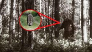 El Extraño Humanoide del Bosque que Aterrorizó a Toda una Población – El Le Loyon