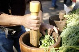 Capacitan a los médicos tradicionales de Bolivia en el uso de plantas medicinales contra el COVID-19