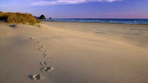 España: Hallan pistas de niños jugando en playa hace 100.000 años