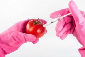 Comida genéticamente modificada, la comida del futuro del Gran Reinicio