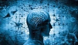 Un estudio científico demuestra que los humanos tienen la capacidad de regenerar partes del cuerpo con la mente