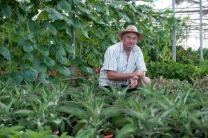 Entrevista a Josep Pámies en el que habla de las plantas medicinales, el covid 19 y la actualidad