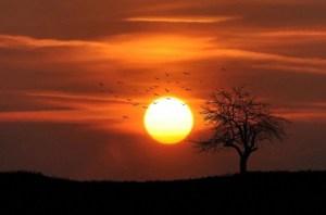 Algo en el Sol hace que tiemble la Tierra y lleguen Tormentas Solares