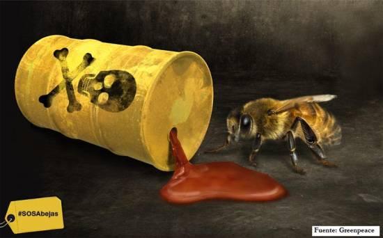 Abejas: el Europarlamento mantiene la prohibición de los neonicotinoides