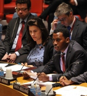 Mustafa Haji Abdinur en la ONU