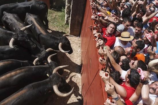 Cinco de doce Concha Ortega, 2011 Para celebrar San Juan, cada año Soria celebra el festejo de La Saca. En 2011 cinco de los doce toros previstos entraron en la plaza de la Chata, después de ser conducidos por más de un centenar de caballistas y otros tantos sanjuaneros a pie desde el monte Valonsadero, en un recorrido de unos ocho kilómetros campo a través.