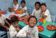 Las organizaciones acusan al ejecutivo de no proteger adecuadamente a los niños